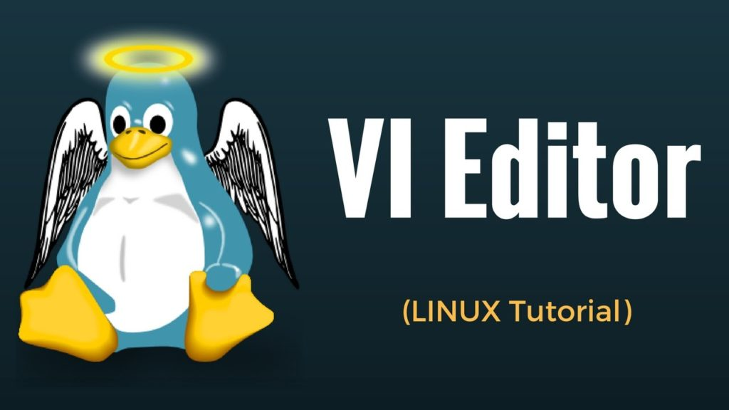 Brief introduction to the vi Editor